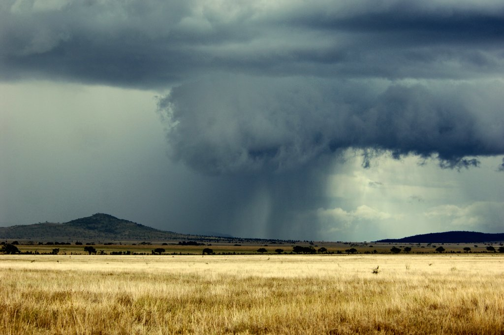 rain_storm_in_the_serengeti_by_capturedjourneys-d5stuvi