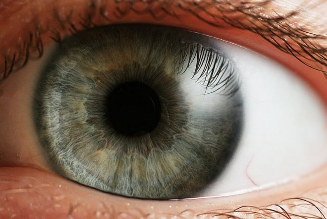Eye_iris-660x441
