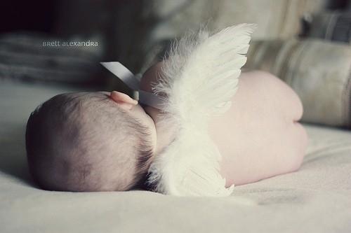 adorablebabycutesweetFavimcom278291large